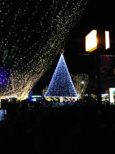 センターを飾る大きなモミの木